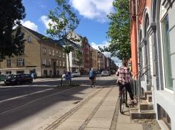 Real Bike Lane