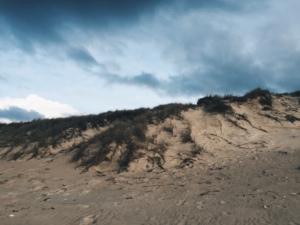 Silica Sands