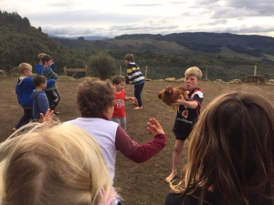 At Lincoln's bday, the kids had fun with the chickens