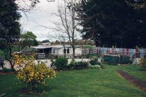 Backyard with three paddocks