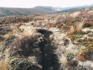 Skinny trail